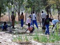 Le cours d'agriculture au Collège Baba Simon