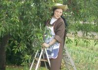 Elisabethaucerises
