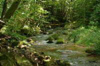 eau rocher abbaye maumont