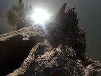 soleil en montagne abbaye maumont